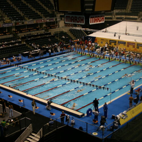 World Swimming Chmps